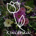 Kvecinka