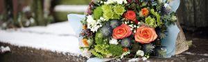 Kvety Sylvia