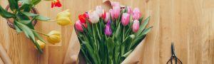 Kvety Kamélia