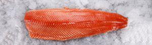 Geisha Fishmarket
